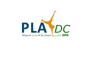 PlayDc final Logo